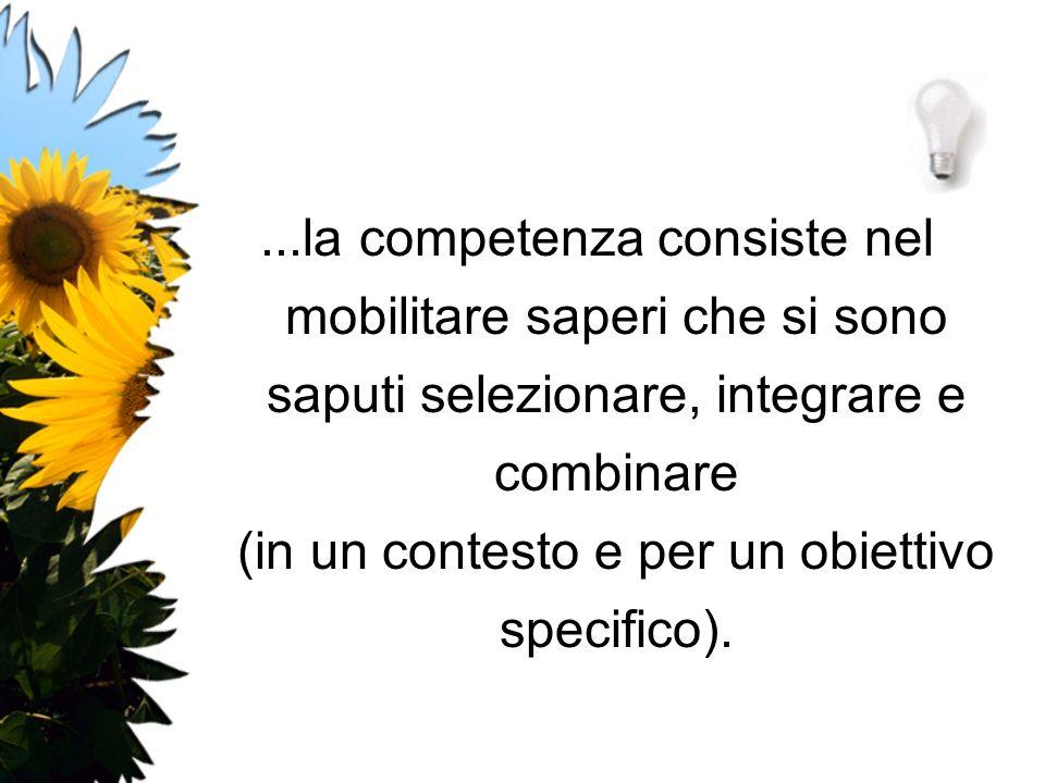 ...la competenza consiste nel mobilitare saperi che si sono saputi selezionare, integrare e combinare (in un contesto e per un obiettivo specifico).