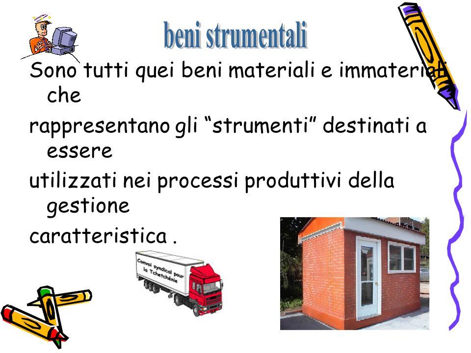 Sono tutti quei beni materiali e immateriali che rappresentano gli strumenti destinati a essere utilizzati nei processi produttivi della gestione cara