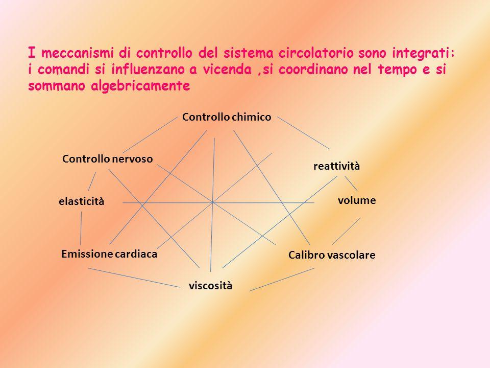I meccanismi di controllo del sistema circolatorio sono integrati: i comandi si influenzano a vicenda,si coordinano nel tempo e si sommano algebricame