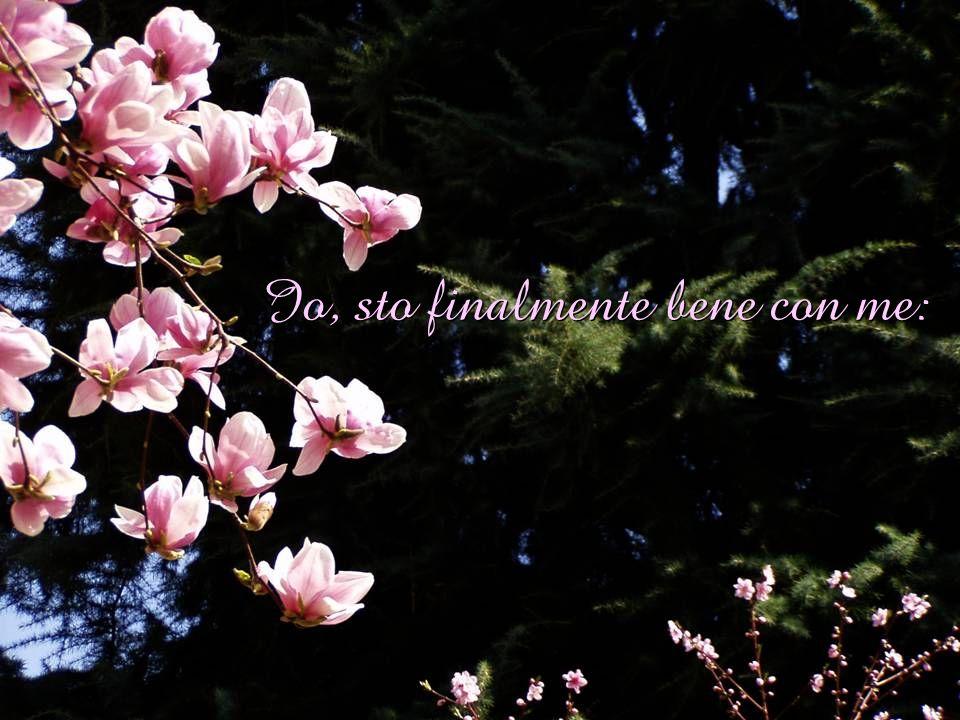 allimprovviso è primavera, trova asilo lanima; Non ha più buchi il sole, sciamano ali di farfalle,