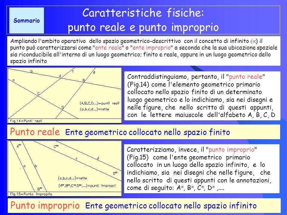 Alcuni esempi di punto geometrico Il punto geometrico ENTE GEOMETRICO ADIMENSIONALE Perché deve essere inteso come qualcosa che esiste concettualmente