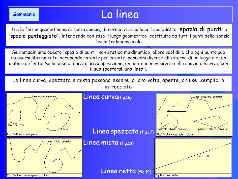 Caratteristiche fisiche: punto reale e punto improprio Punto reale : Ente geometrico collocato nello spazio finito Punto improprio : Ente geometrico collocato nello spazio infinito Contraddistinguiamo, pertanto, il punto reale (Fig.14) come l elemento geometrico primario collocato nello spazio finito di un determinato luogo geometrico e lo indichiamo, sia nei disegni e nelle figure, che nello scritto di questi appunti, con le lettere maiuscole dell alfabeto A, B, C, D Caratterizziamo, invece, il punto improprio (Fig.15) come l ente geometrico primario collocato in un luogo dello spazio infinito, e lo indichiamo, sia nei disegni che nelle figure, che nello scritto di questi appunti con le annotazioni, come di seguito: A, B, C, D,....