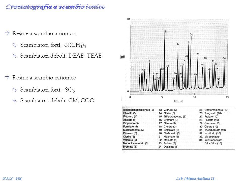 Lab. Chimica Analitica II _HPLC - IEC Resine a scambio anionico Resine a scambio cationico Scambiatori forti: -N(CH 3 ) 3 Scambiatori deboli: DEAE, TE