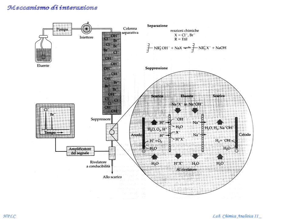 Lab. Chimica Analitica II _HPLC