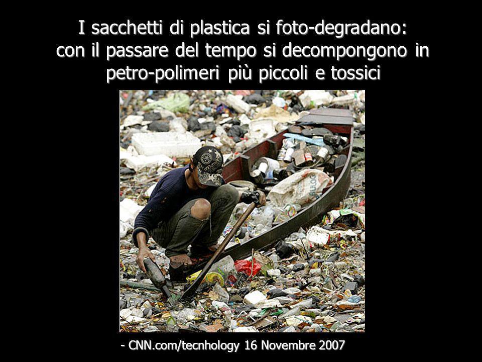 I sacchetti di plastica rappresentano piú del 10% dei rifiuti che giungono a riva delle coste degli Stati Uniti. - Programma di Monitoraggio dei rifiu