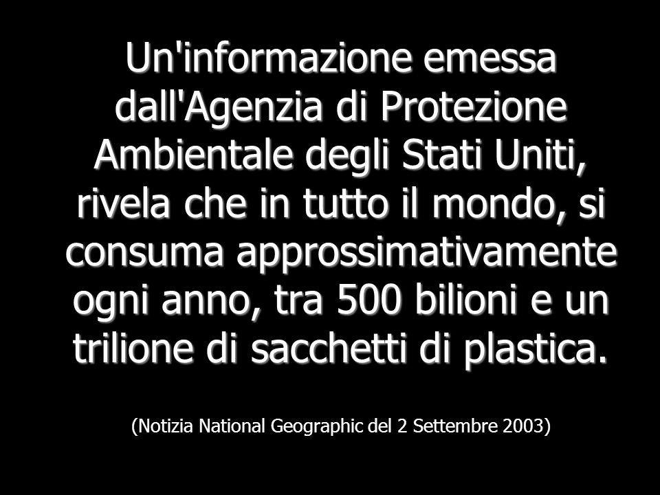 Un informazione emessa dall Agenzia di Protezione Ambientale degli Stati Uniti, rivela che in tutto il mondo, si consuma approssimativamente ogni anno, tra 500 bilioni e un trilione di sacchetti di plastica.