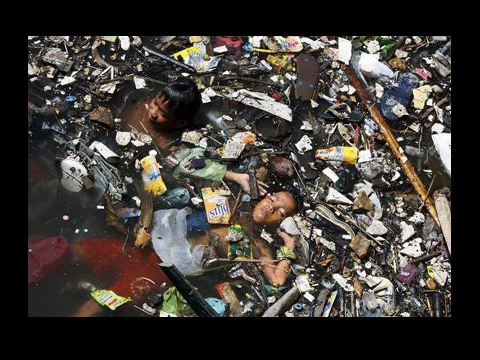 Un'informazione emessa dall'Agenzia di Protezione Ambientale degli Stati Uniti, rivela che in tutto il mondo, si consuma approssimativamente ogni anno
