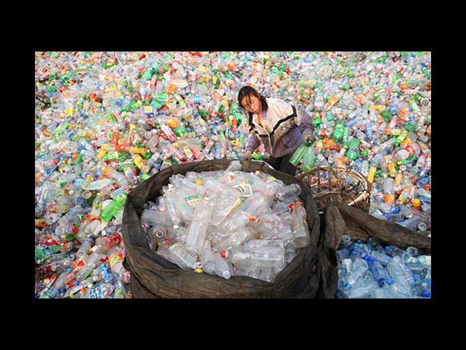 La situazione e' drammatica: le buste di plastica galleggianti negli oceani formano ormai vere e proprie