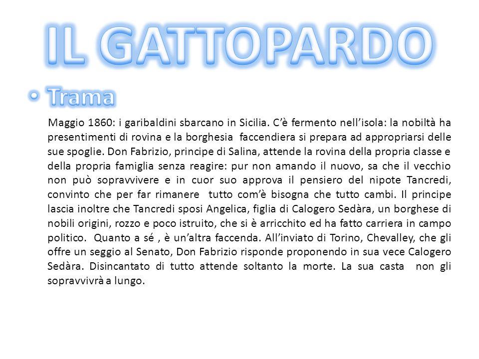 Scritto tra la fine del 1954 e il 1957 il Gattopardo venne pubblicato postumo nel 1958. Nella stesura del suo romanzo Giuseppe Tomasi di Lampedusa tra