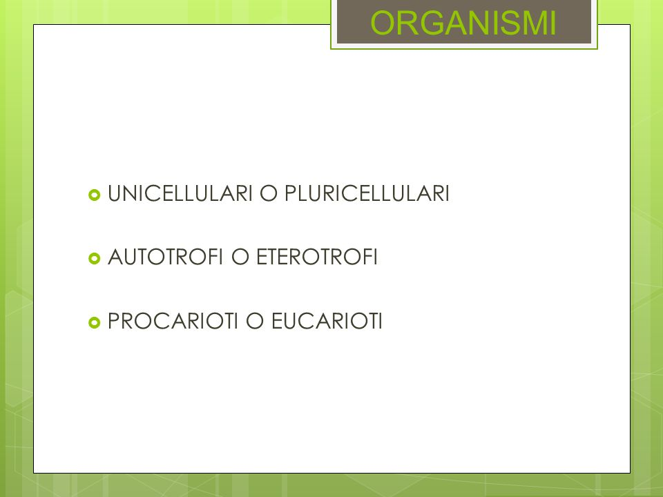 ESERCIZIO Quale delle seguenti ghiandole non è endocrina.
