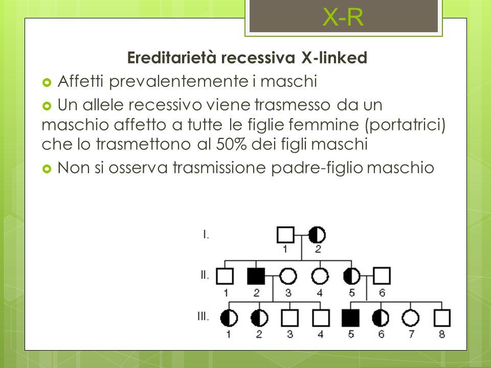 X-R Ereditarietà recessiva X-linked Affetti prevalentemente i maschi Un allele recessivo viene trasmesso da un maschio affetto a tutte le figlie femmi