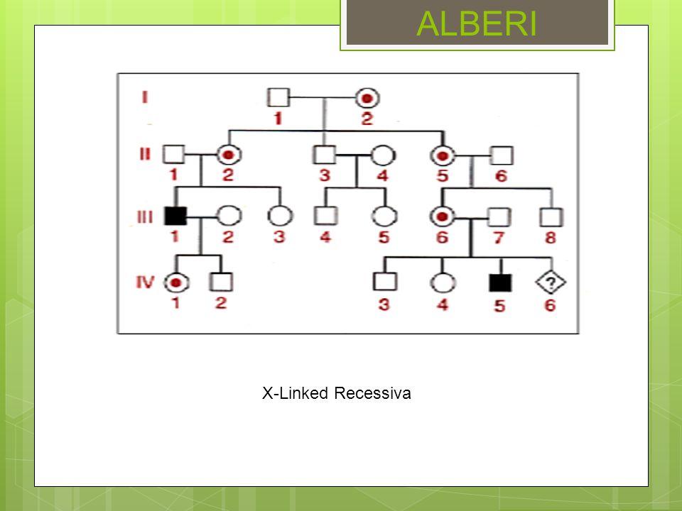 ALBERI X-Linked Recessiva