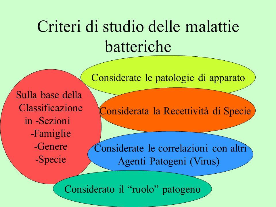 Criteri di studio delle malattie batteriche Sulla base della Classificazione in -Sezioni -Famiglie -Genere -Specie Considerate le patologie di apparat