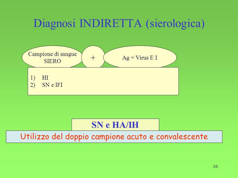36 Diagnosi INDIRETTA (sierologica) SN e HA/IH Utilizzo del doppio campione acuto e convalescente Campione di sangue SIERO + Ag = Virus E I 1)HI 2)SN e IFI