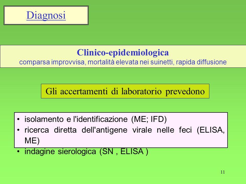 11 isolamento e l'identificazione (ME; IFD) ricerca diretta dell'antigene virale nelle feci (ELISA, ME) indagine sierologica (SN, ELISA ) Gli accertam