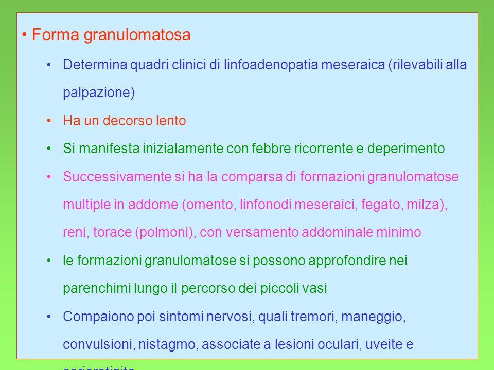 21 Forma granulomatosa Determina quadri clinici di linfoadenopatia meseraica (rilevabili alla palpazione) Ha un decorso lento Si manifesta inizialamen