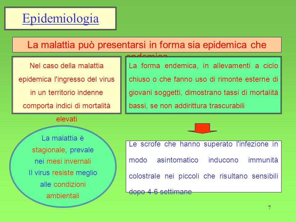 7 Epidemiologia La malattia può presentarsi in forma sia epidemica che endemica Nel caso della malattia epidemica l'ingresso del virus in un territori