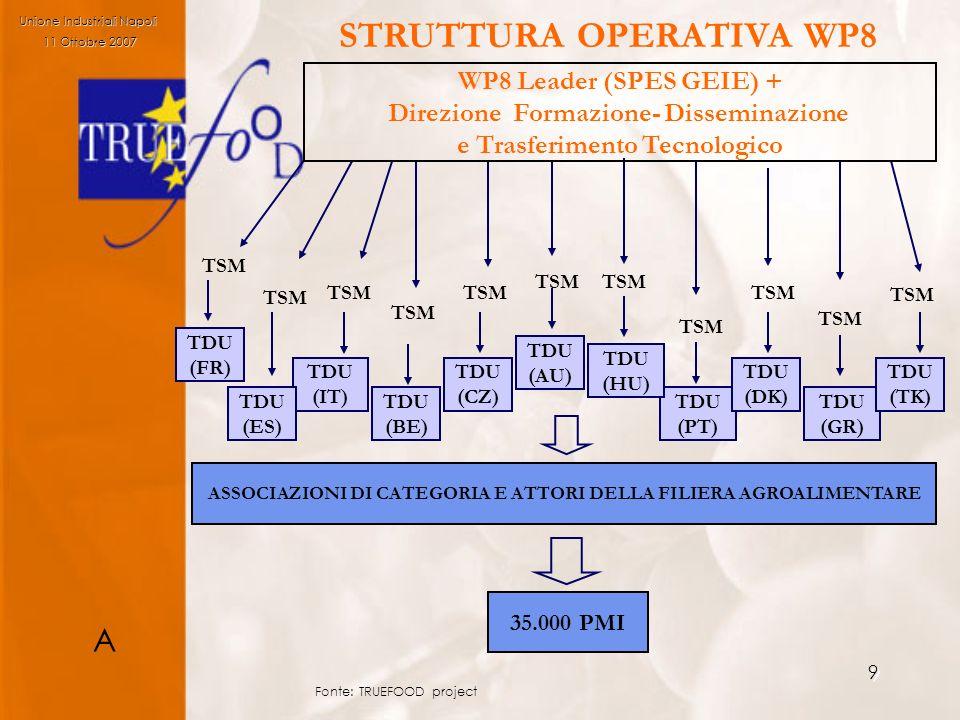 9 TDU (PT) TDU (DK) TDU (GR) TDU (TK) TDU (HU) TDU (AU) TDU (CZ) TDU (BE) TDU (IT) TDU (ES) TSM WP8 Leader (SPES GEIE) + Direzione Formazione- Dissemi