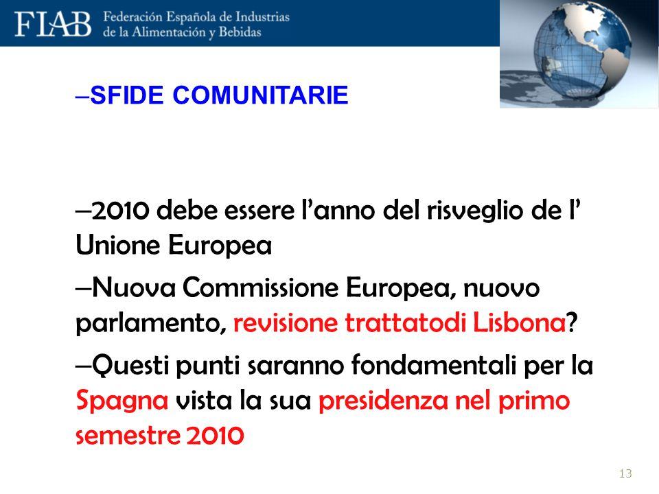 –SFIDE COMUNITARIE – 2010 debe essere lanno del risveglio de l Unione Europea – Nuova Commissione Europea, nuovo parlamento, revisione trattatodi Lisbona.