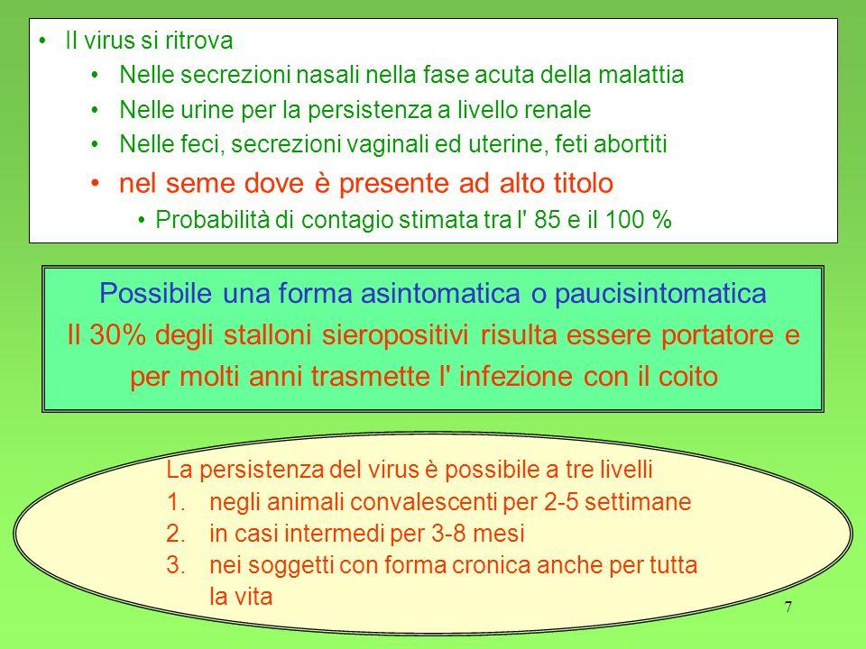 7 Possibile una forma asintomatica o paucisintomatica Il 30% degli stalloni sieropositivi risulta essere portatore e per molti anni trasmette l infezione con il coito Il virus si ritrova Nelle secrezioni nasali nella fase acuta della malattia Nelle urine per la persistenza a livello renale Nelle feci, secrezioni vaginali ed uterine, feti abortiti nel seme dove è presente ad alto titolo Probabilità di contagio stimata tra l 85 e il 100 % La persistenza del virus è possibile a tre livelli 1.negli animali convalescenti per 2-5 settimane 2.in casi intermedi per 3-8 mesi 3.nei soggetti con forma cronica anche per tutta la vita