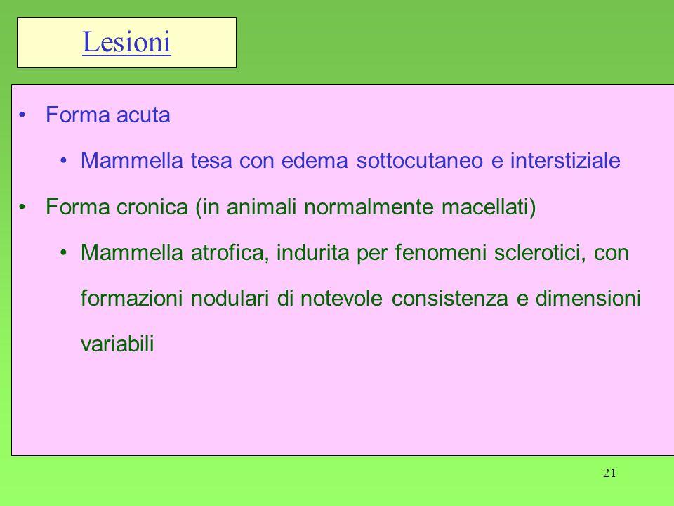 21 Forma acuta Mammella tesa con edema sottocutaneo e interstiziale Forma cronica (in animali normalmente macellati) Mammella atrofica, indurita per f