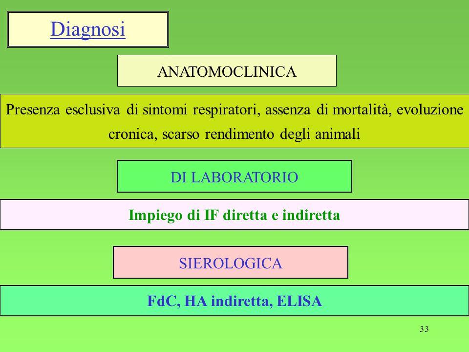 33 Impiego di IF diretta e indiretta DI LABORATORIO Presenza esclusiva di sintomi respiratori, assenza di mortalità, evoluzione cronica, scarso rendim