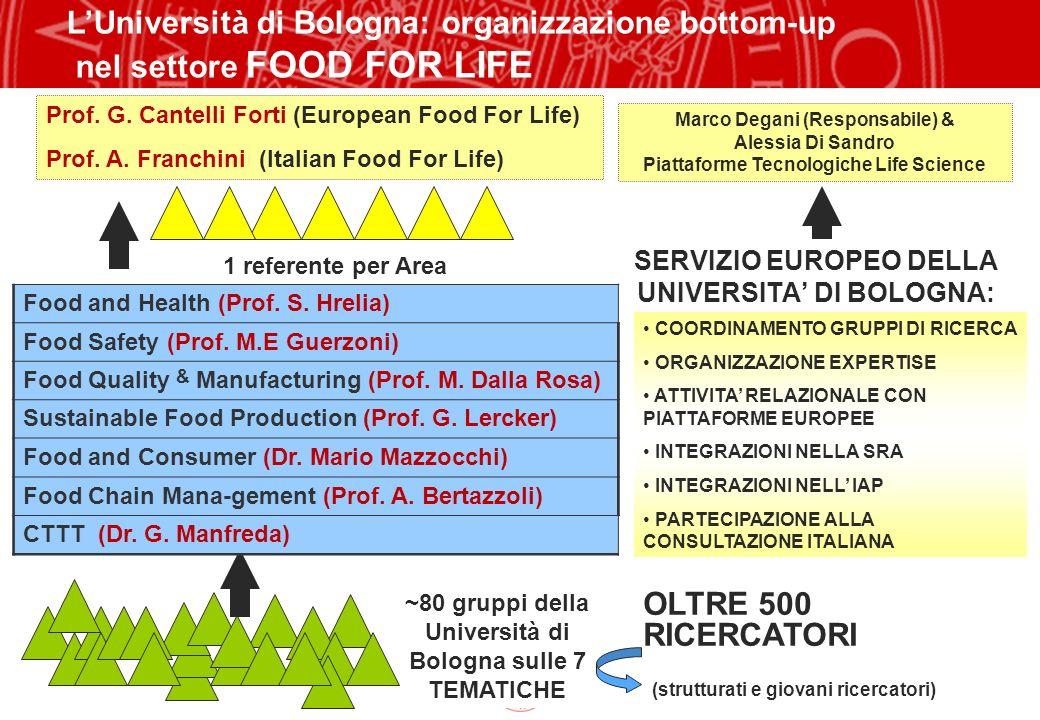 Copyright©2003 - Materiale riservato e strettamente confidenziale 13 ~80 gruppi della Università di Bologna sulle 7 TEMATICHE SERVIZIO EUROPEO DELLA U