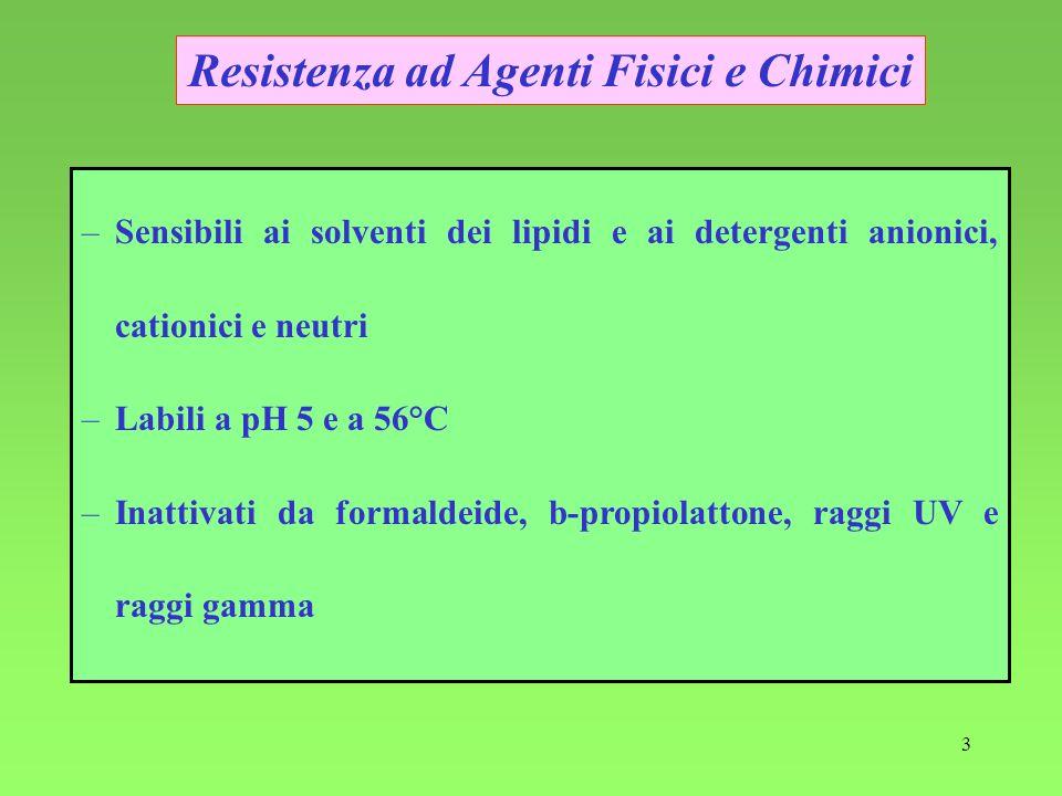 3 –Sensibili ai solventi dei lipidi e ai detergenti anionici, cationici e neutri –Labili a pH 5 e a 56°C –Inattivati da formaldeide, b-propiolattone,