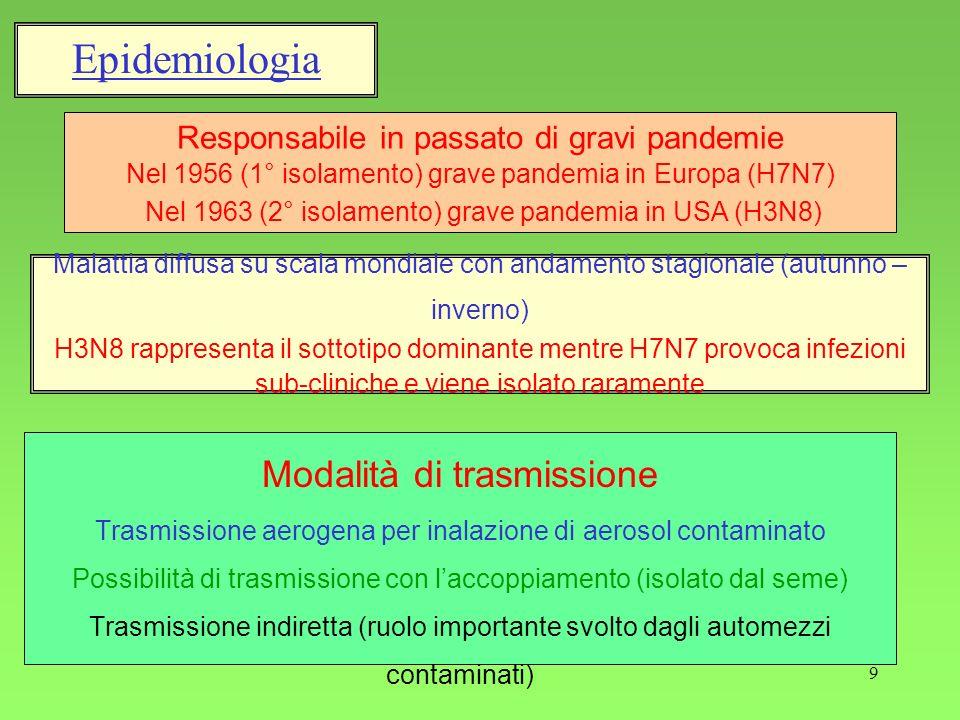 9 Epidemiologia Responsabile in passato di gravi pandemie Nel 1956 (1° isolamento) grave pandemia in Europa (H7N7) Nel 1963 (2° isolamento) grave pand