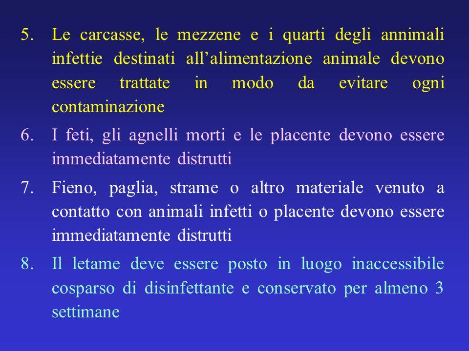 5.Le carcasse, le mezzene e i quarti degli annimali infettie destinati allalimentazione animale devono essere trattate in modo da evitare ogni contami