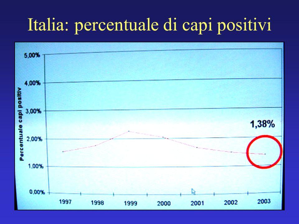 Italia: percentuale di capi positivi