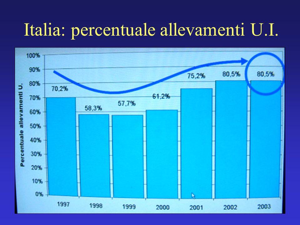 Italia: percentuale allevamenti U.I.