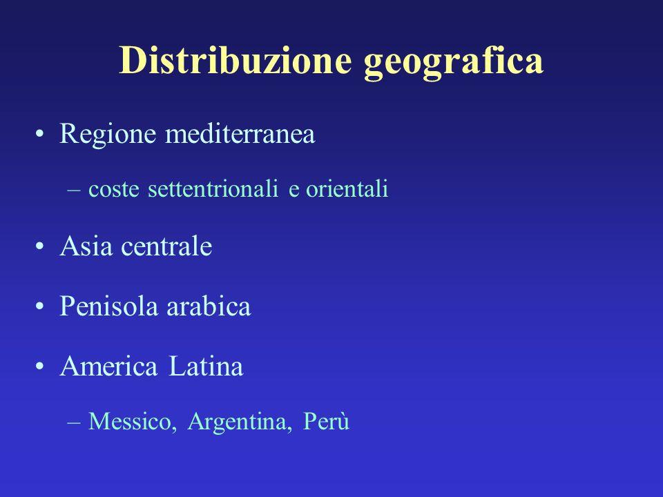 Regione mediterranea –coste settentrionali e orientali Asia centrale Penisola arabica America Latina –Messico, Argentina, Perù Distribuzione geografic