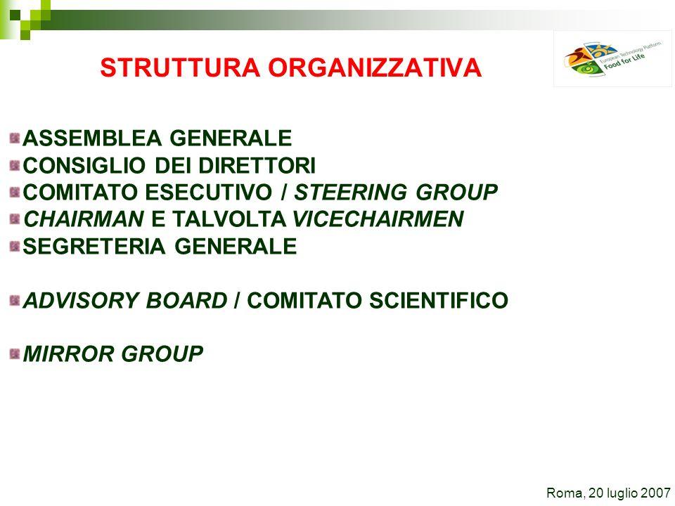 STRUTTURA ORGANIZZATIVA ASSEMBLEA GENERALE CONSIGLIO DEI DIRETTORI COMITATO ESECUTIVO / STEERING GROUP CHAIRMAN E TALVOLTA VICECHAIRMEN SEGRETERIA GENERALE ADVISORY BOARD / COMITATO SCIENTIFICO MIRROR GROUP Roma, 20 luglio 2007
