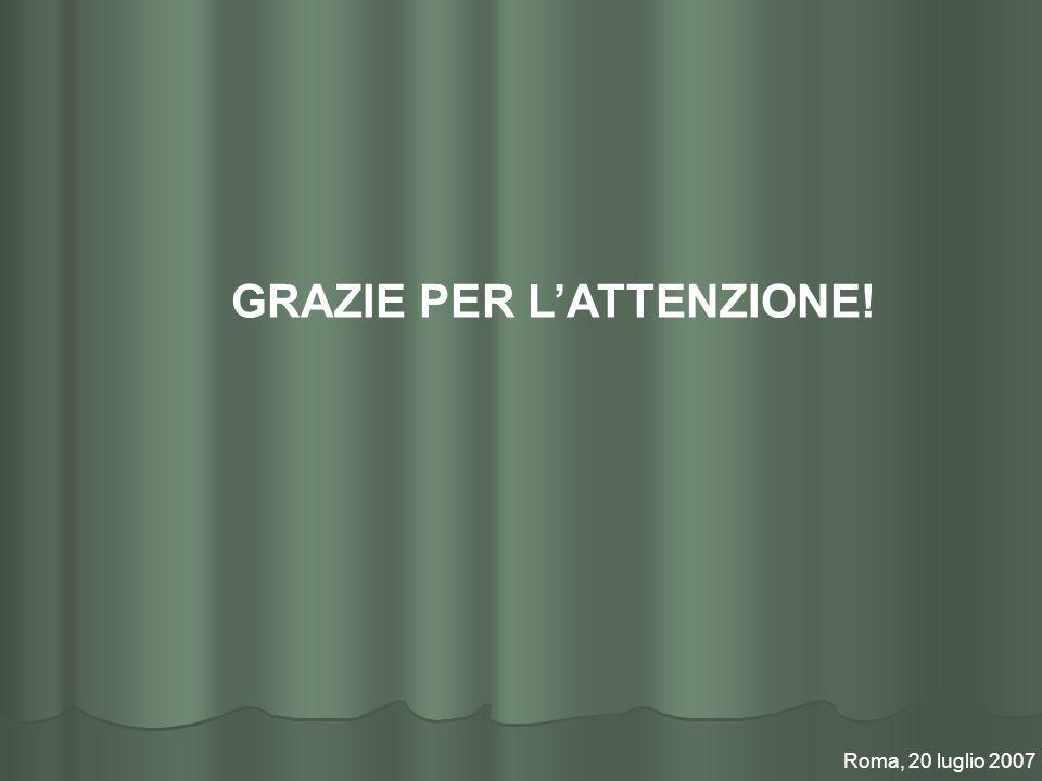 GRAZIE PER LATTENZIONE! Roma, 20 luglio 2007