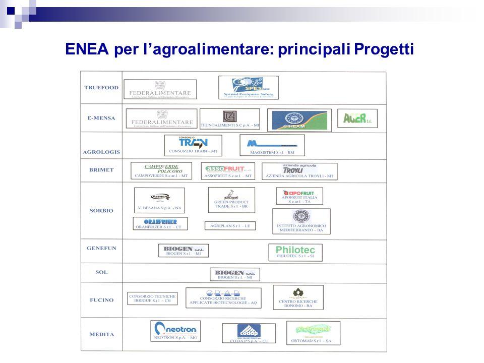 ENEA per lagroalimentare: principali Progetti