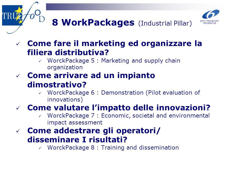 8 WorkPackages (Industrial Pillar) Come fare il marketing ed organizzare la filiera distributiva? WorckPackage 5 : Marketing and supply chain organiza