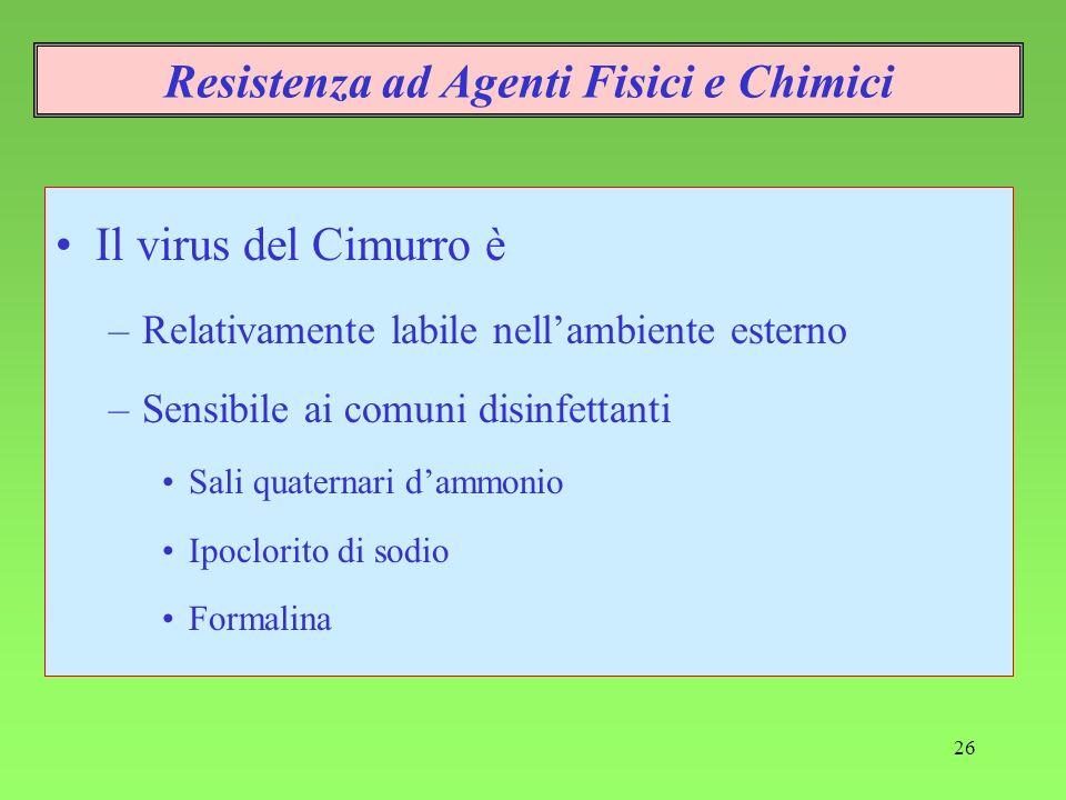 26 Resistenza ad Agenti Fisici e Chimici Il virus del Cimurro è –Relativamente labile nellambiente esterno –Sensibile ai comuni disinfettanti Sali qua