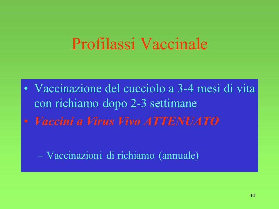 40 Profilassi Vaccinale Vaccinazione del cucciolo a 3-4 mesi di vita con richiamo dopo 2-3 settimane Vaccini a Virus Vivo ATTENUATO –Vaccinazioni di r