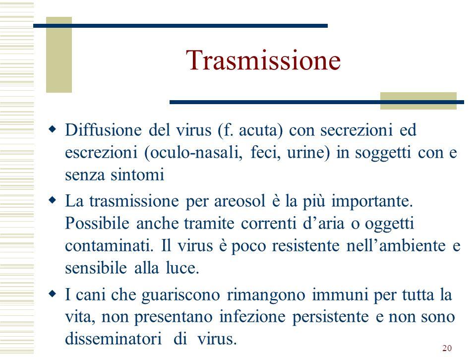 20 Trasmissione Diffusione del virus (f. acuta) con secrezioni ed escrezioni (oculo-nasali, feci, urine) in soggetti con e senza sintomi La trasmissio