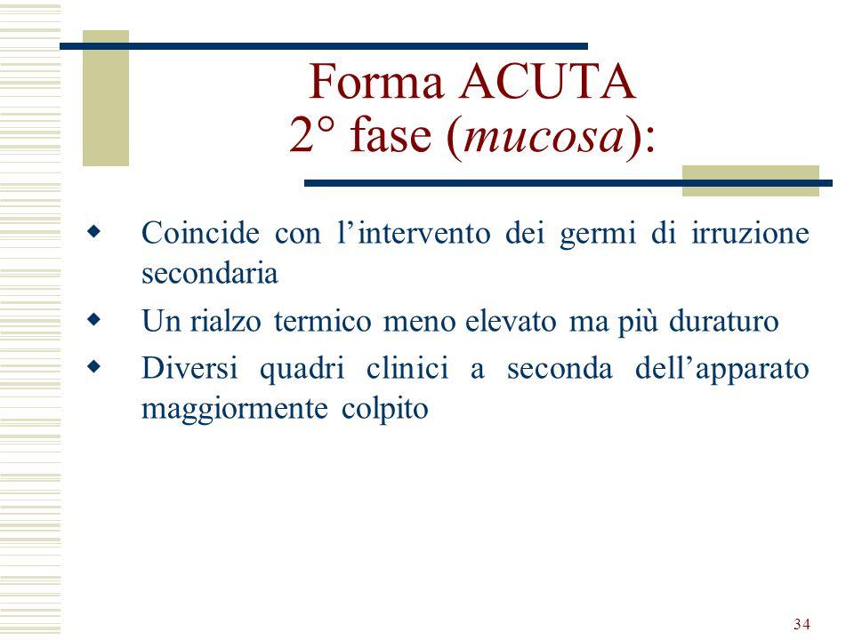 34 Forma ACUTA 2° fase (mucosa): Coincide con lintervento dei germi di irruzione secondaria Un rialzo termico meno elevato ma più duraturo Diversi qua