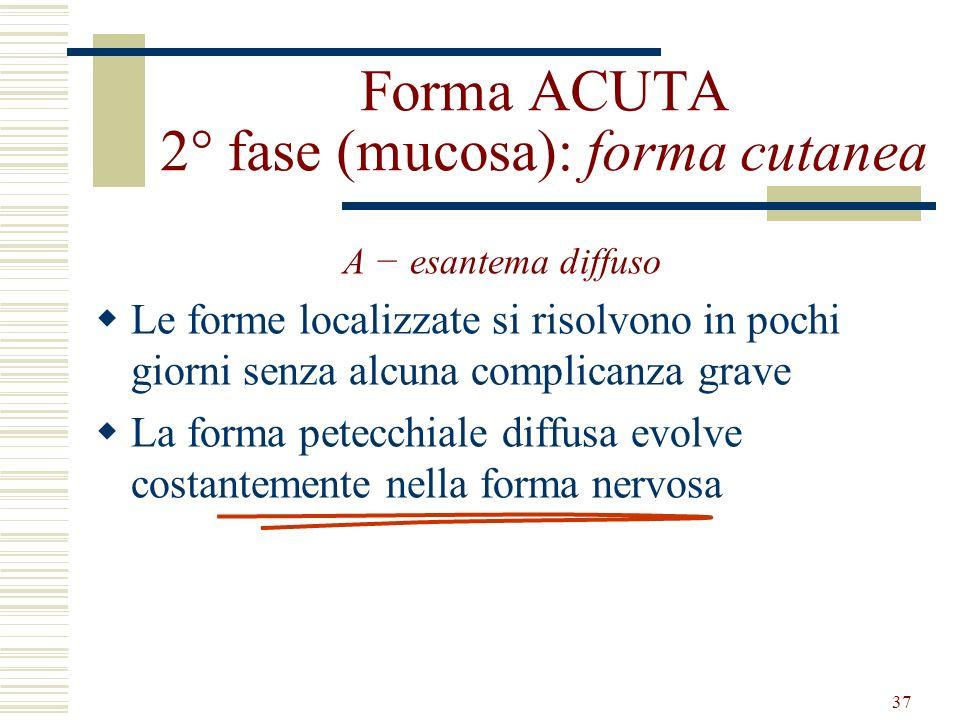 37 Forma ACUTA 2° fase (mucosa): forma cutanea A esantema diffuso Le forme localizzate si risolvono in pochi giorni senza alcuna complicanza grave La