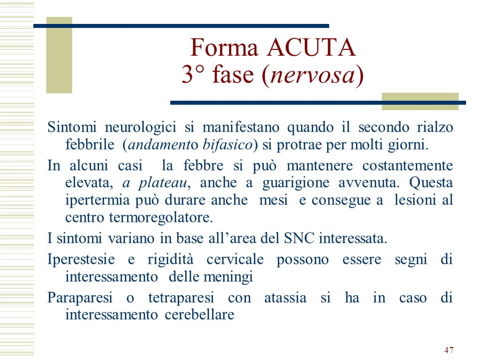47 Forma ACUTA 3° fase (nervosa) Sintomi neurologici si manifestano quando il secondo rialzo febbrile (andamento bifasico) si protrae per molti giorni