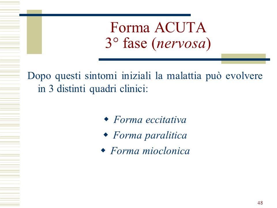48 Forma ACUTA 3° fase (nervosa) Dopo questi sintomi iniziali la malattia può evolvere in 3 distinti quadri clinici: Forma eccitativa Forma paralitica