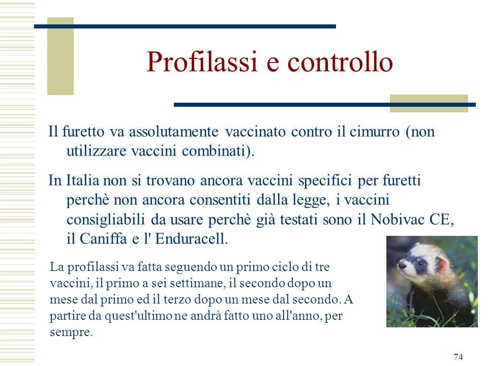 74 Profilassi e controllo Il furetto va assolutamente vaccinato contro il cimurro (non utilizzare vaccini combinati). In Italia non si trovano ancora