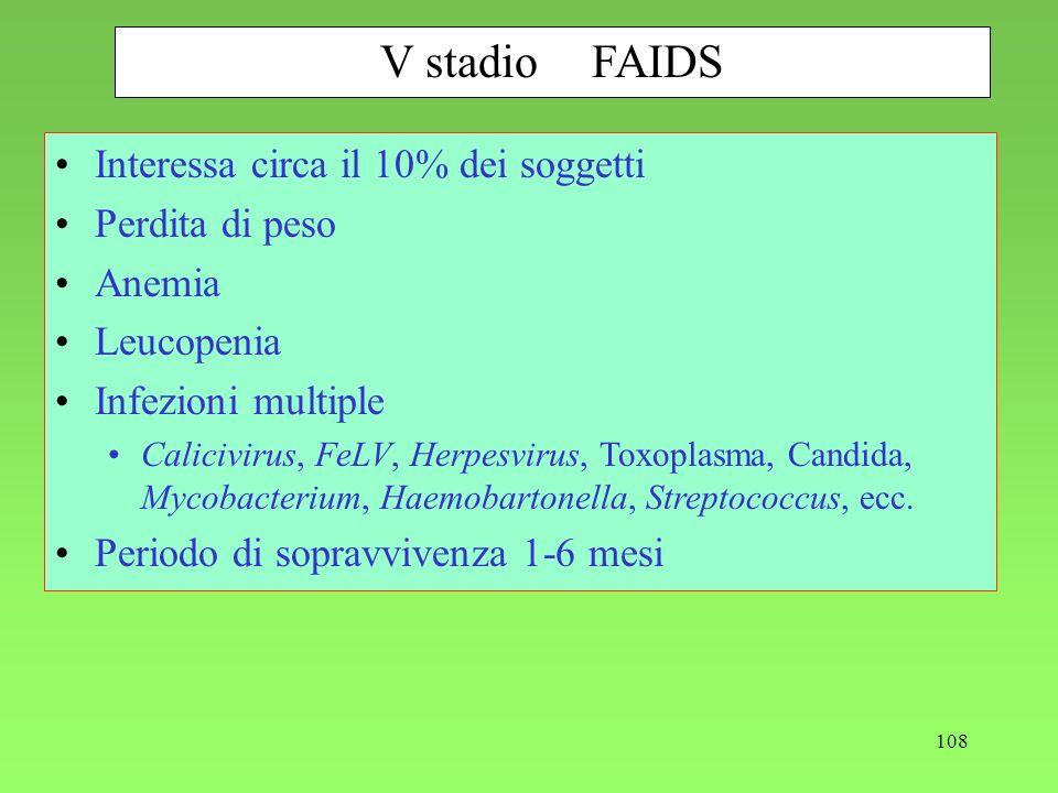 108 V stadioFAIDS Interessa circa il 10% dei soggetti Perdita di peso Anemia Leucopenia Infezioni multiple Calicivirus, FeLV, Herpesvirus, Toxoplasma,