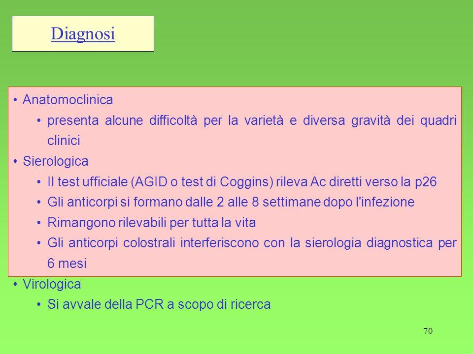 70 Diagnosi Anatomoclinica presenta alcune difficoltà per la varietà e diversa gravità dei quadri clinici Sierologica Il test ufficiale (AGID o test d
