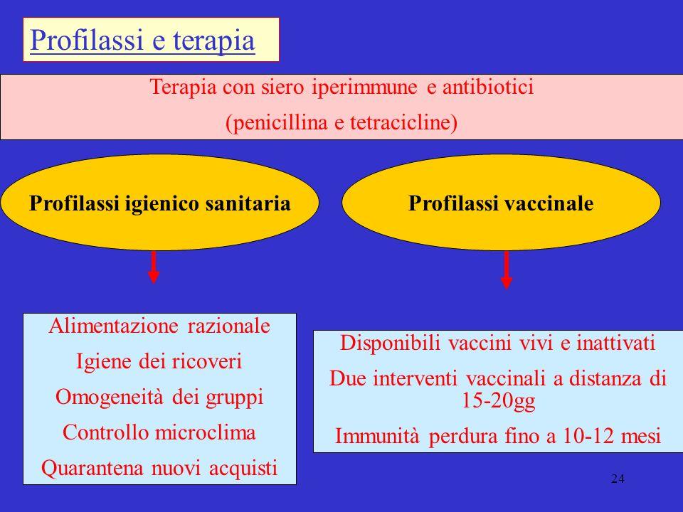24 Terapia con siero iperimmune e antibiotici (penicillina e tetracicline) Profilassi igienico sanitaria Profilassi e terapia Alimentazione razionale Igiene dei ricoveri Omogeneità dei gruppi Controllo microclima Quarantena nuovi acquisti Profilassi vaccinale Disponibili vaccini vivi e inattivati Due interventi vaccinali a distanza di 15-20gg Immunità perdura fino a 10-12 mesi