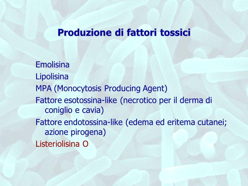 Produzione di fattori tossici Emolisina Lipolisina MPA (Monocytosis Producing Agent) Fattore esotossina-like (necrotico per il derma di coniglio e cav