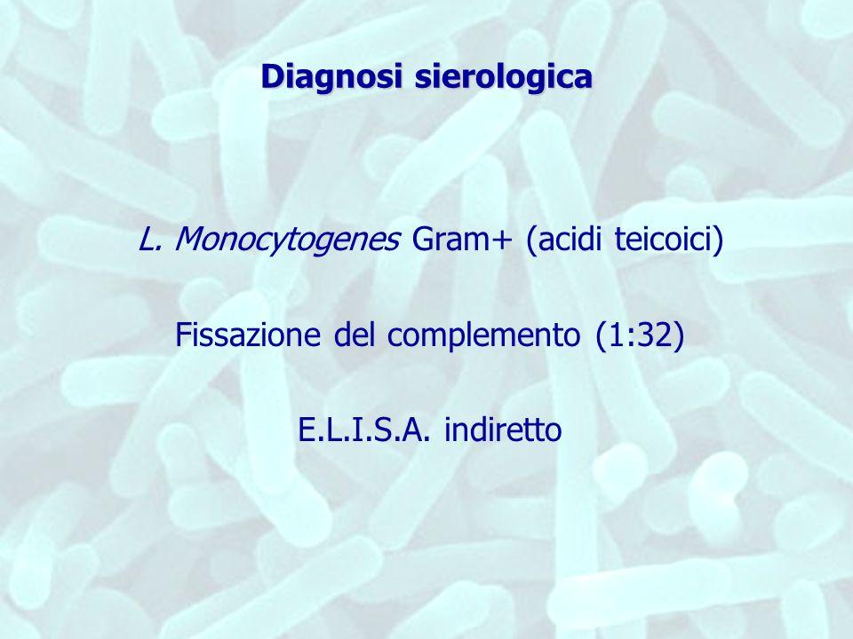 Diagnosi sierologica L. Monocytogenes Gram+ (acidi teicoici) Fissazione del complemento (1:32) E.L.I.S.A. indiretto